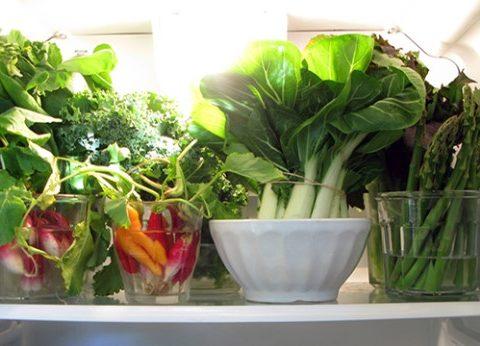 Bỏ túi bí quyết bảo quản rau thơm tươi lâu dùng hết mọi lá