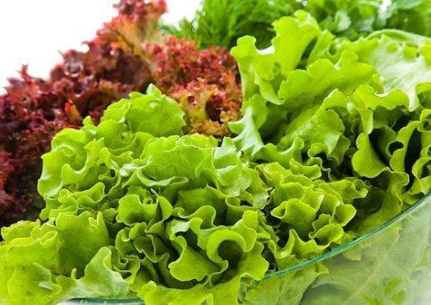 10 công dụng rau xà lách và lưu ý trường hợp không nên ăn xà lách sống