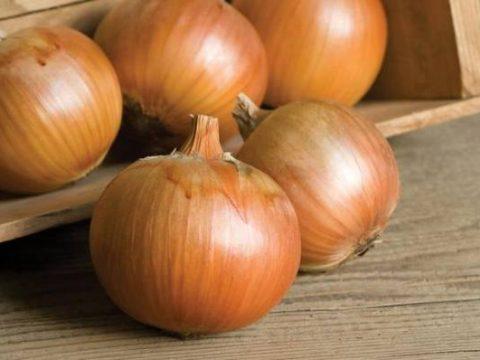 Thành phần dinh dưỡng có trong hành tây có tốt cho sức khỏe không?