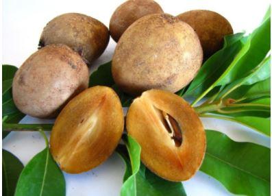 Top 11 loại trái cây giúp tăng cân hiệu quả và nhanh nhất