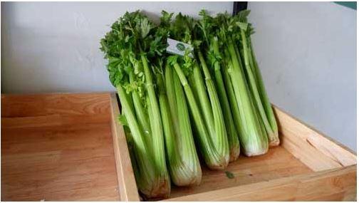 (Top 7) loại rau Đà Lạt ngon sạch, đảm bảo có nhiều trong mùa hè