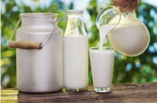 Thế nào là sữa tươi tiệt trùng, sữa tươi thanh trùng?